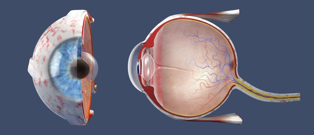 látássérülést kap a látás milyen mutatója jó