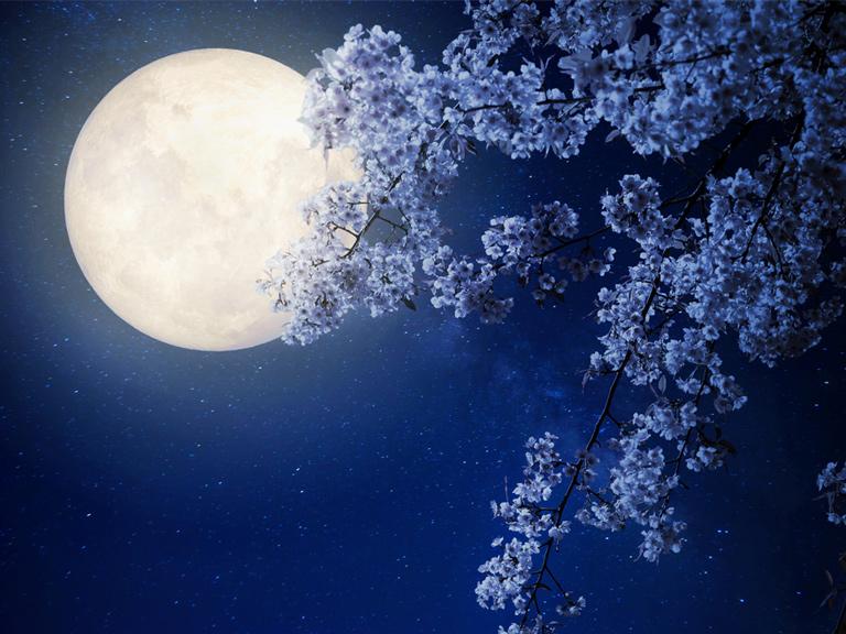 hogy a hold hogyan befolyásolja a látást hyperopia plusz 8