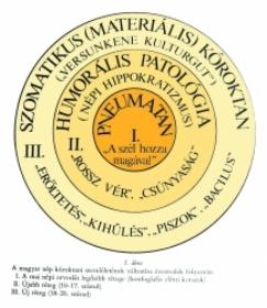 Magyar gyógynövények, népi gyógyászat