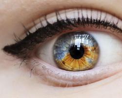 javítja a látás tisztaságát