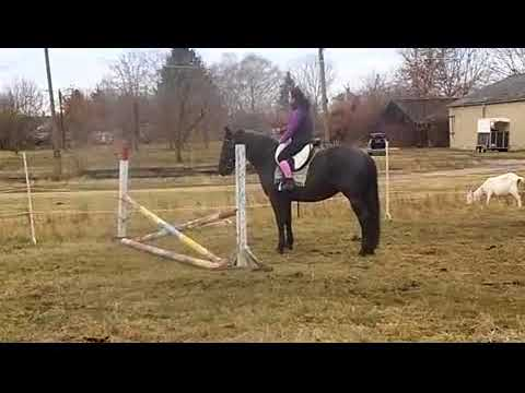 rövidlátás és lovaglás
