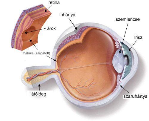 gyenge látás szülni