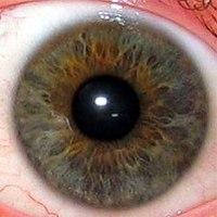 Mi okozhat látászavart? - A bal szem látása romlott
