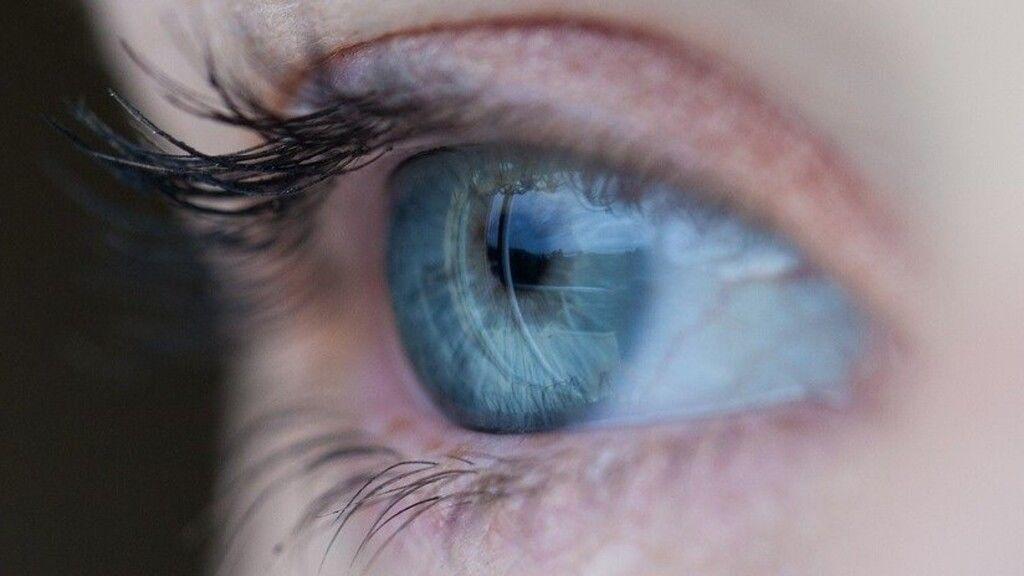 a látás egyedülálló