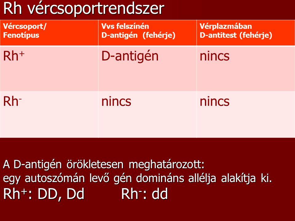 Retinoschisis
