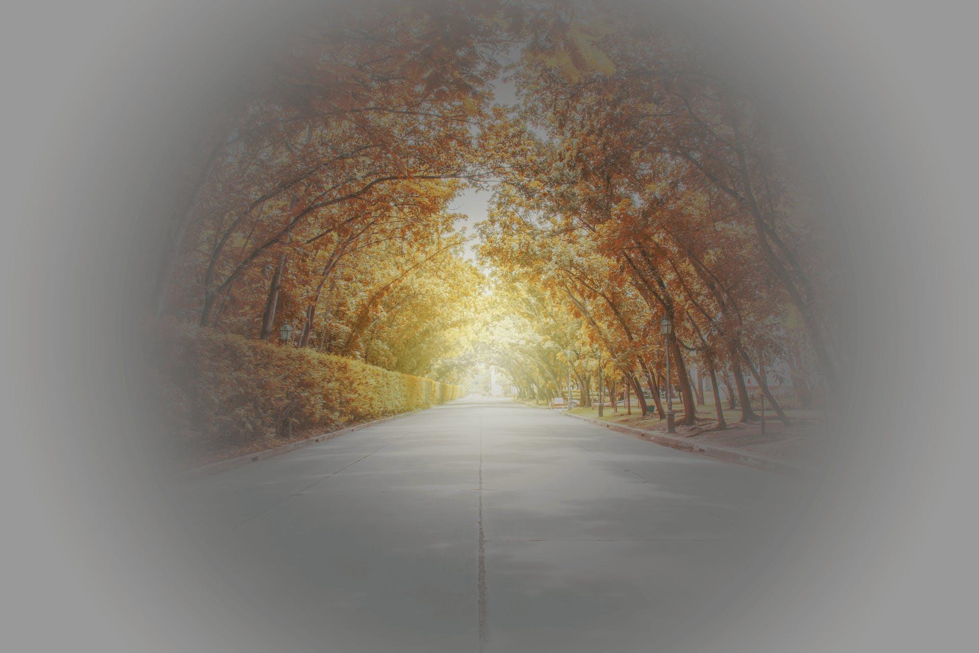 Tunnel Vision-okok és kezelések - Egészség -