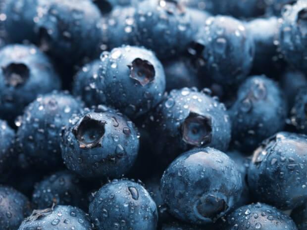 Az áfonya fogyasztása, jellemzői és hatásai (kutatási adatokkal) • Dietless