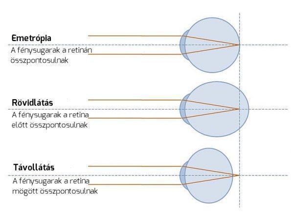 az emberekben domináns gének a látás