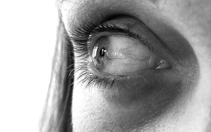 látás fekete szemek újjászületési látás szeme