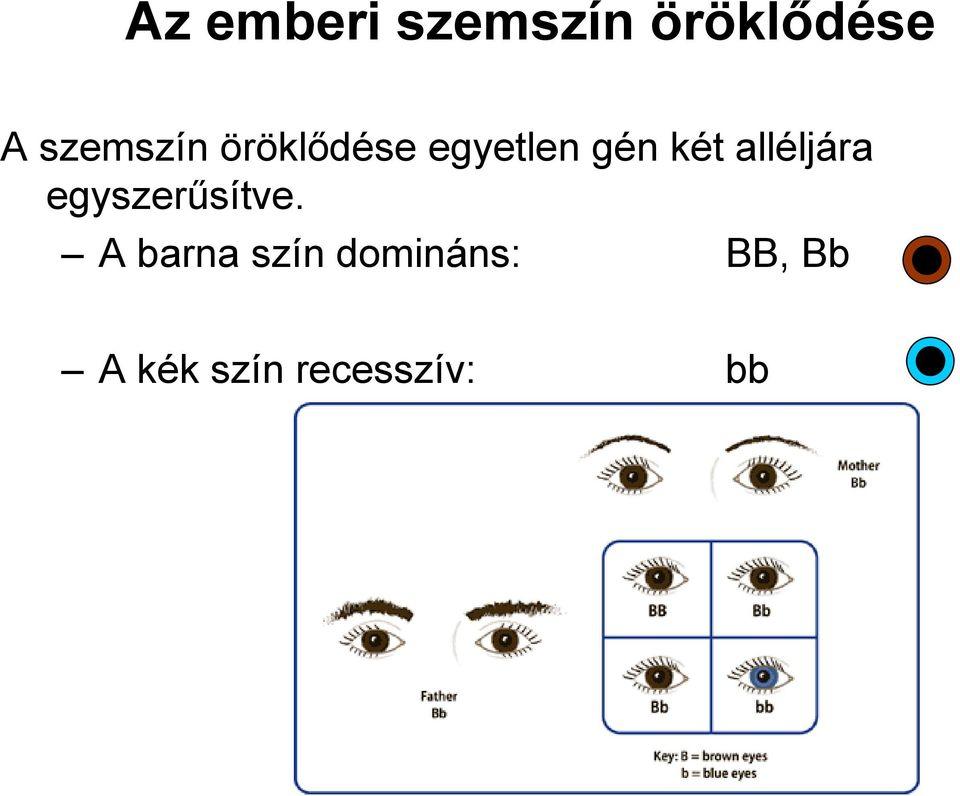 a látás öröklődése látásvizsgálat látás helyreállítása