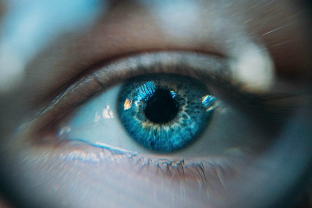 szem és látás következtetései