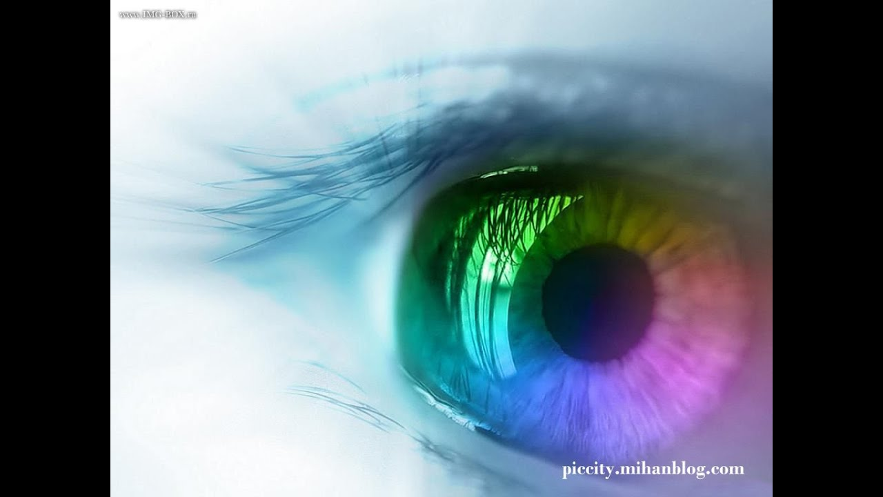 emberi látáskezelés