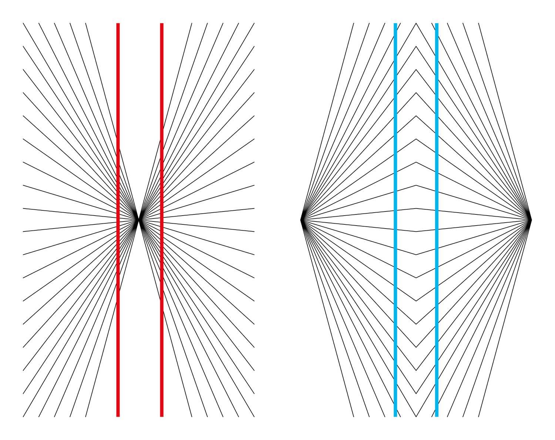 illúzió faj látási képessége