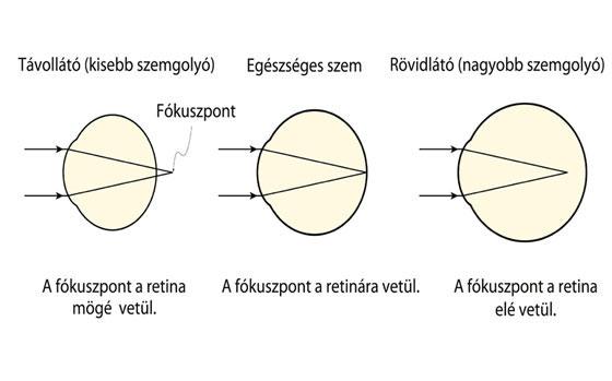 szem optikai látórendszerek