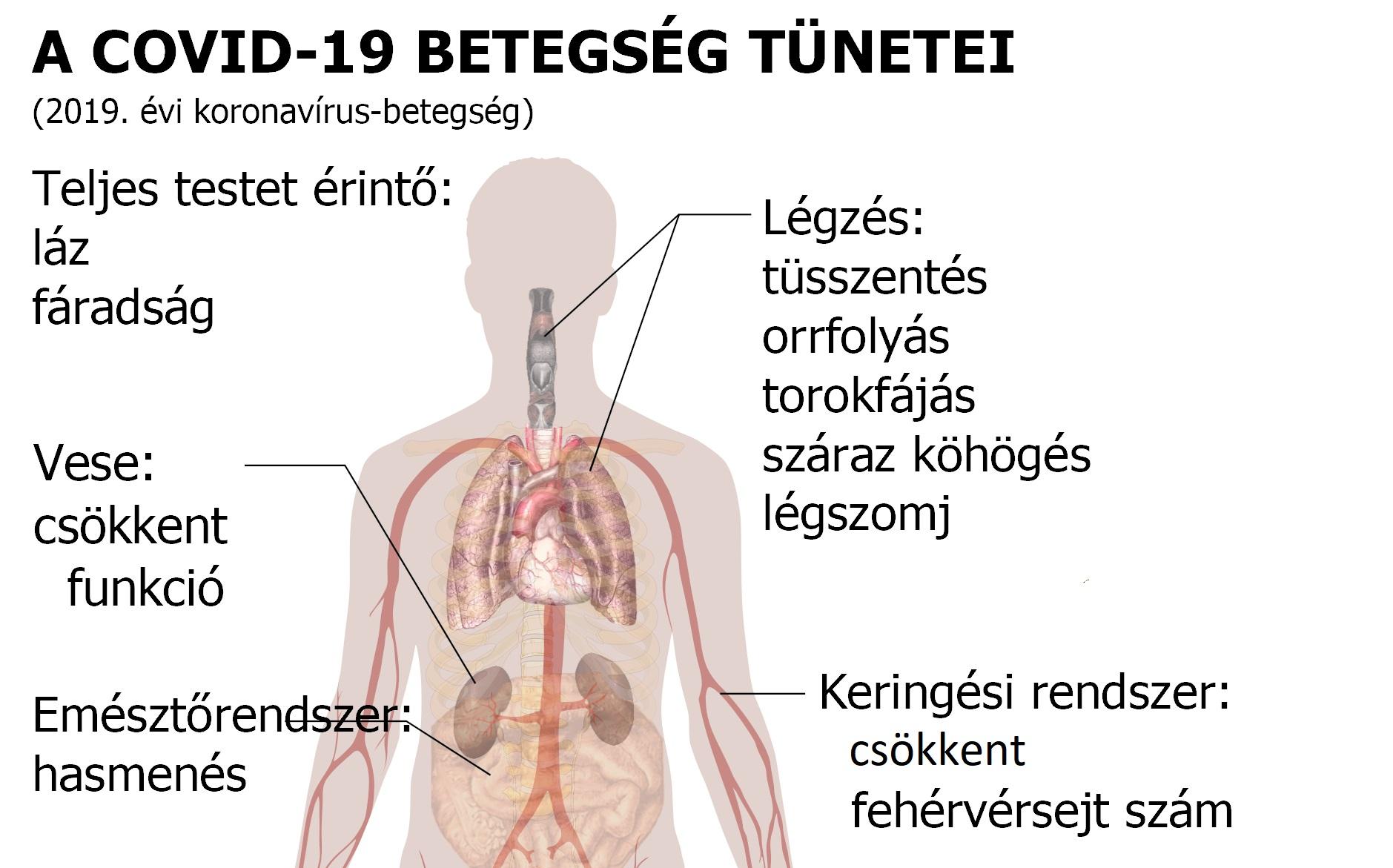 Látásromlás okai, tünetei és kezelése • hopehelycukraszda.hu