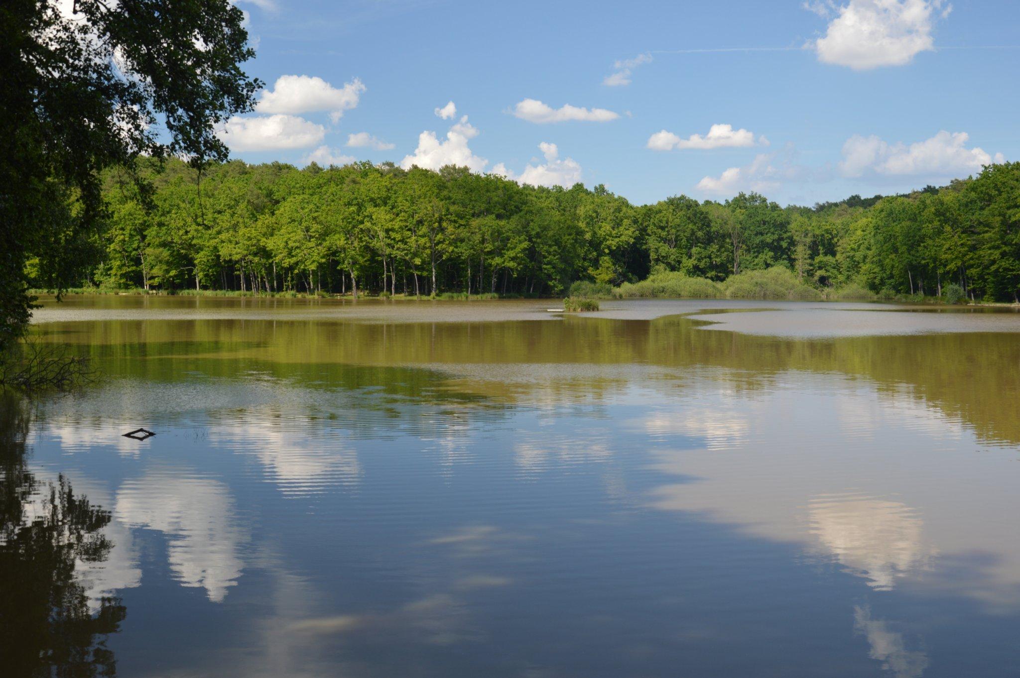 a látást gyógyító tó