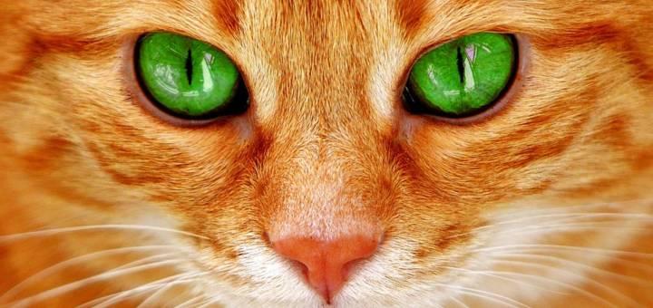 Hogyan változik a szemünk az életkorunkkal?