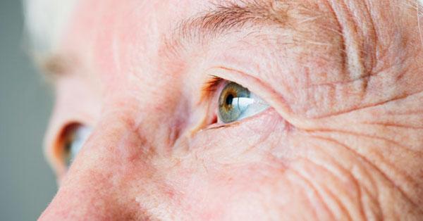 látássérült személyek társadalmi rehabilitációja