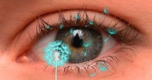 az emberi látás jellemzőinek tanulmányozása)